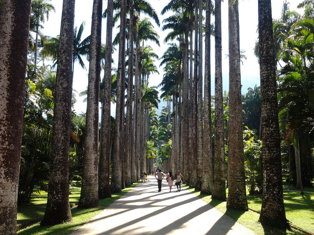 Jardim Botanico is one of the best Eco Tourism Attractions in Rio photo by CC user feliven on Flickr